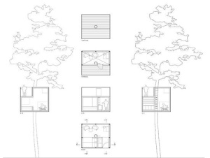 tree-house-design